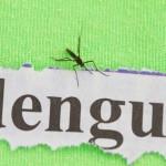 Dengue-Fieber