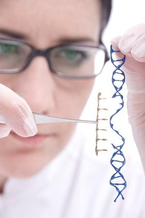 Gemäss Hämatologen ist meist ein Gen-Defekt als Ursache der Eisenspeicherkrankheit