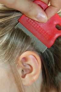 Для расчесывания волос рекомендуется использовать специальный гребень с частыми зубьями